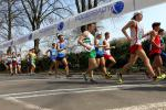 PODĚBRADY   2015       - MČR v chůzi a MU (EA Race Walking Permit Meeting) - 11.4.2015